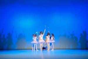 Baletni nastop 2015